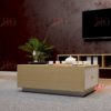 SF HG 18 100x100 - Bàn sofa