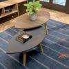 Bàn sofa chân gỗ sồi tự nhiên hình chiếc lá