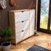 img ke giay dep KG HG 17 100x100 - Tủ giầy 3 tầng 2 ngăn